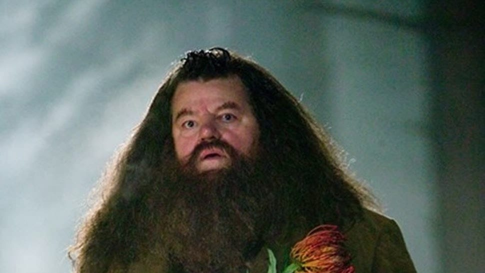 There's A Dark Harry Potter Theory That Hagrid Is A Death Eater