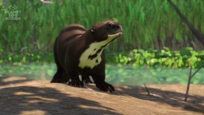 Otter planet-zoo-aquatic-pack