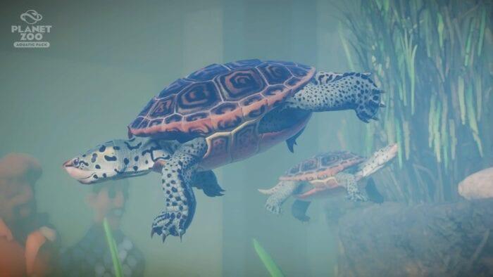 turtle planet-zoo-aquatic-pack